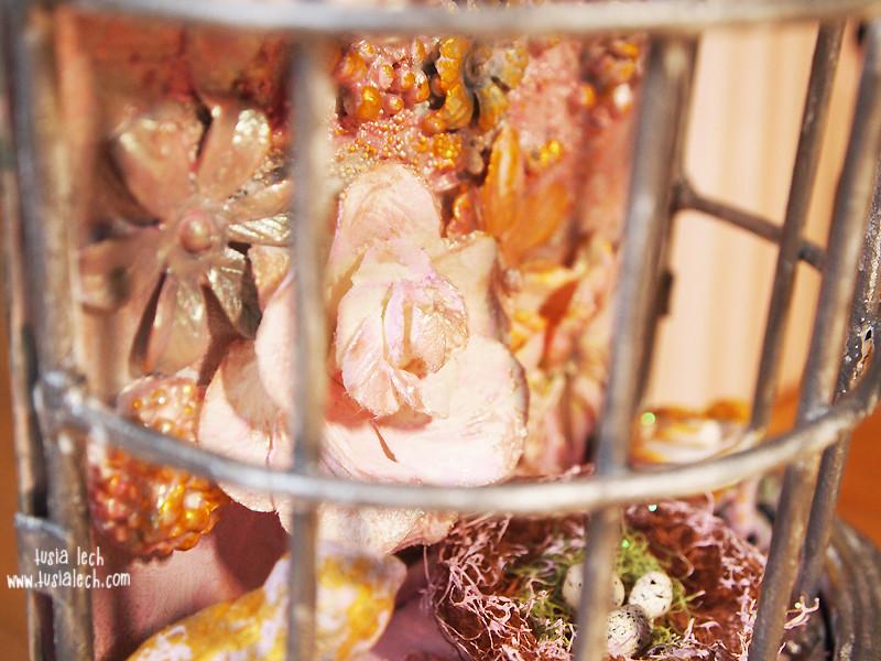 altered birdcage
